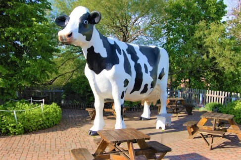 Lake Superior Roadside Attractions - Dairy Cows
